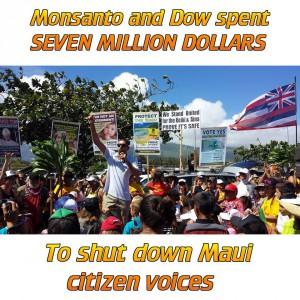 Maui anti-GMO rally